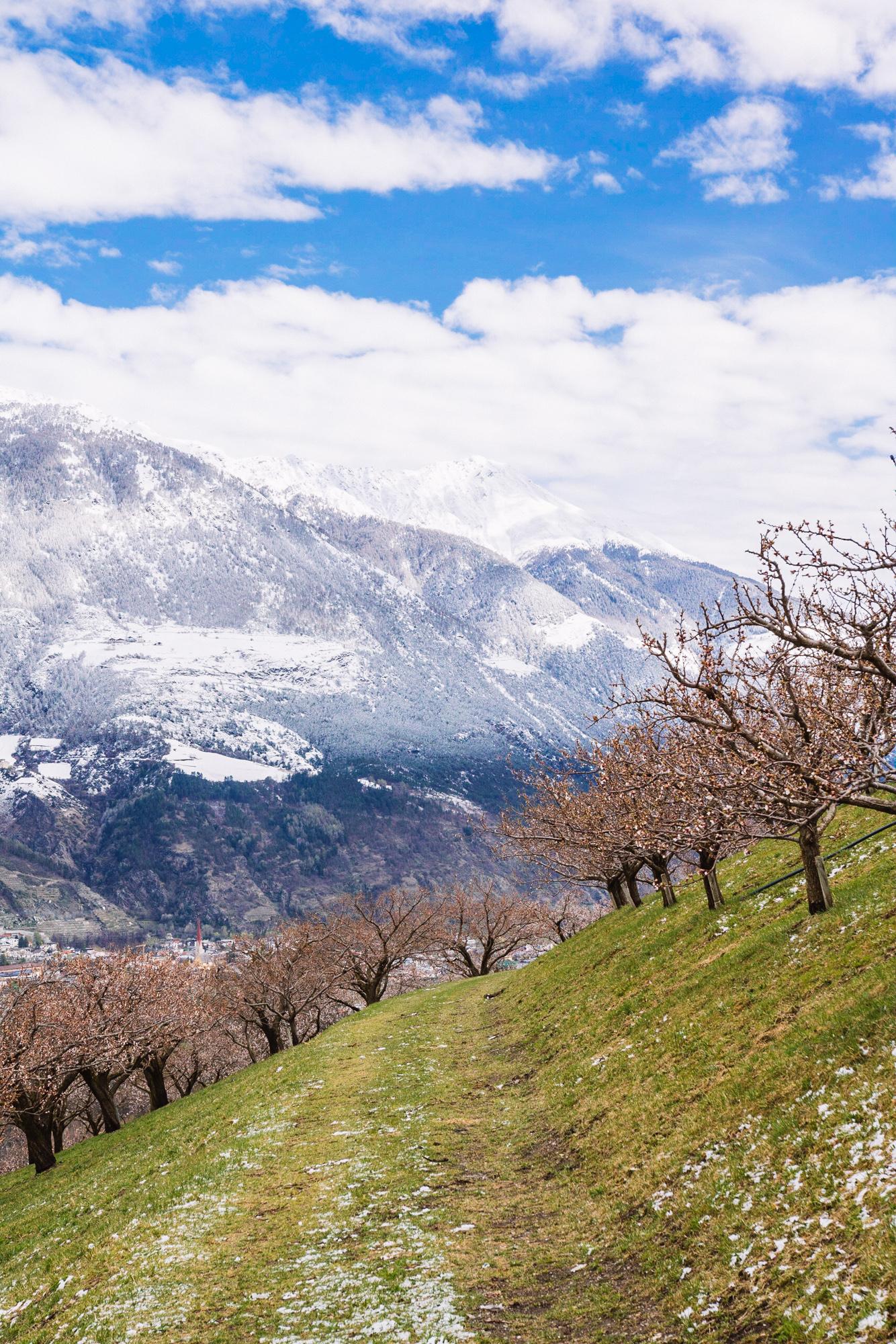 Südtirol-3193